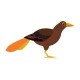 Brown bird icon Stock Photos