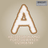 Brown Biscuit Alphabet and Numbers Vector Royalty Free Stock Photography