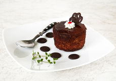 Brown biscuit Stock Images