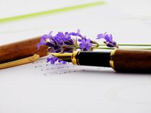 Brown Black and Brass Fountain Pen Royalty Free Stock Photos