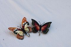 Brown and Black Butterfly Shower Curtain Hooks on White Linen royalty free stock photography