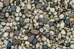 Brown and black gravel texture royalty free stock photos