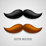 Brown, black  isolated mustaches set. Vector Royalty Free Stock Images