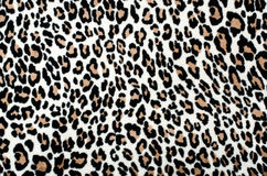 Brown and black leopard pattern. Stock Photo