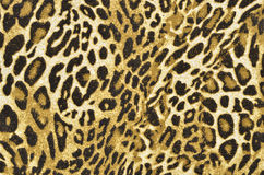 Brown and black leopard pattern. Royalty Free Stock Image