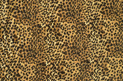 Brown and black leopard pattern. Stock Photos