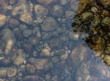Brown and Black Rocks on Clear Body of Water during Daytime Stock Photography