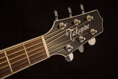 Brown and Black Takamine Guitar Headstock Stock Photo