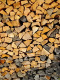 Brown and black tree stumps Royalty Free Stock Photography