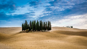 Brown and blue landscape in autumn in Tuscany Royalty Free Stock Images