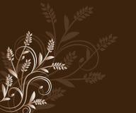 Brown-Blumenhintergrund Stockbild
