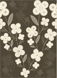 Brown-Blumenhintergrund Lizenzfreies Stockbild