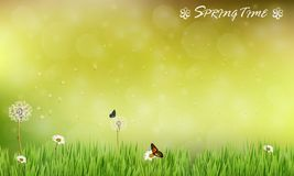 Brown blur background of spring meadow with butterflies Royalty Free Stock Photo