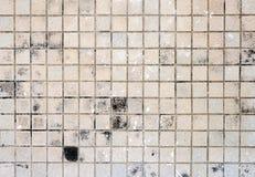 Brown-Bodenfliese schmutzig Stockfoto