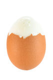 Brown boiled egg. With clipping path Stock Image