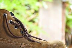 Brown boot Stock Image