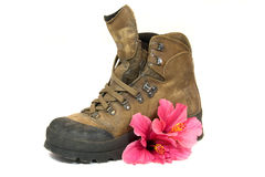 Brown boot with red flower Royalty Free Stock Image
