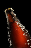 Brown bottle of beer Royalty Free Stock Images