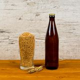 Brown bottle and beer glass with malt royalty free stock photo