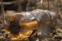 A brown bottle thrown in the woods. Garbage stock photography