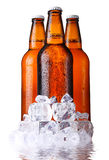 Brown bottles of beer with ice isolated Royalty Free Stock Photo