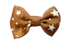 Brown bow. Stock Image