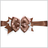 Brown bow with horizontal ribbon Royalty Free Stock Photography