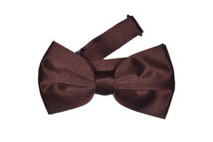 Brown bow tie Stock Photography