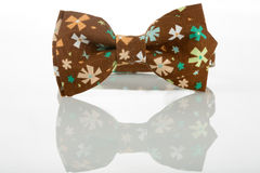 Brown bow tie on a white background. floret Royalty Free Stock Photo