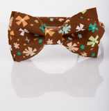 Brown bow tie on a white background. floret Royalty Free Stock Photography