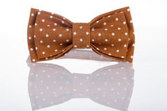 Brown bow tie on a white background Stock Photography