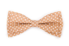 Brown bow tie with white polka dots on an isolated. White background royalty free stock images