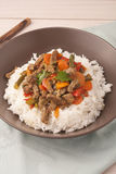 A brown bowl of white rice with stir fry beef with Stock Image