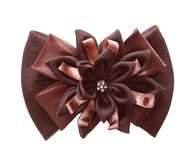 Brown bows Royalty Free Stock Photo
