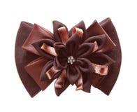 Brown bows royaltyfri foto
