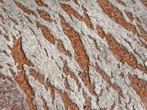 Brown bread. Real brown bread (close-up Stock Photo