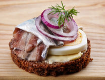 Brown bread canape with anchovies decorated with red onion and d Royalty Free Stock Image