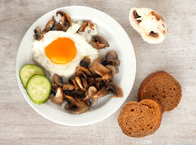 Brown bread, cucumbe, fried eggs and champignons Stock Images