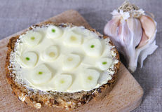 Brown bread with garlic Royalty Free Stock Photography