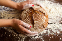 Brown bread in hands Royalty Free Stock Images