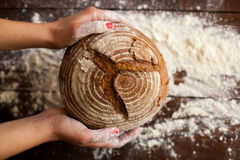Brown bread in hands Royalty Free Stock Photography