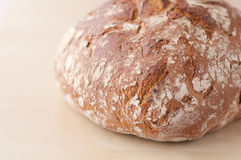 Brown bread loaf. Horizontal, close-up image of Brown bread loaf on creamy background Stock Image