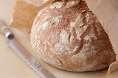 Brown bread loaf. Horizontal, close-up image of Brown bread loaf on creamy background with bread knife Royalty Free Stock Photos