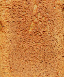 Brown bread texture Royalty Free Stock Image