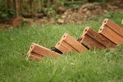 Brown brick lined up on the green grass. Stock Photography