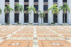 Brown  brick pavement ground floor with a architecture building '. Brown brick pavement ground floor with a architecture building 's wall and palm tree Royalty Free Stock Images