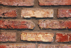 Brown brick texture Royalty Free Stock Images