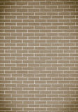 Brown brick wall as background or texture Stock Image