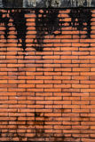 Brown Brick wall. For background and composite work Stock Photo