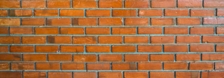 Brown brick wall background. In the  good place on the holiday trip,look strong and beautiful Stock Image